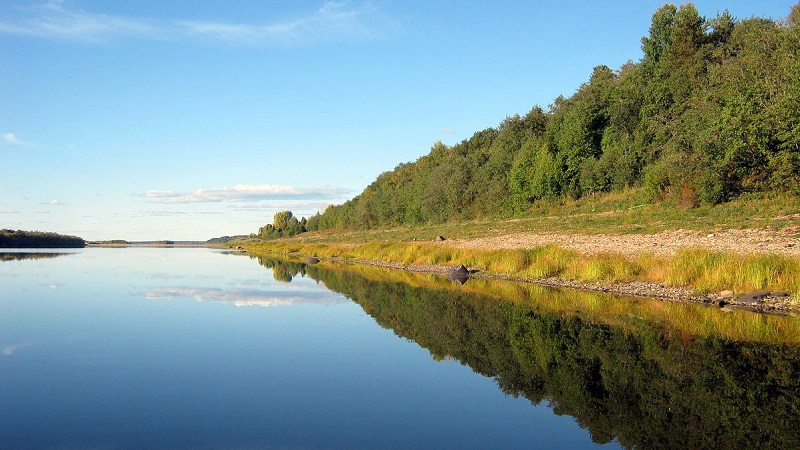 На берегу Северной Двины обнаружено тело неизвестного мужчины