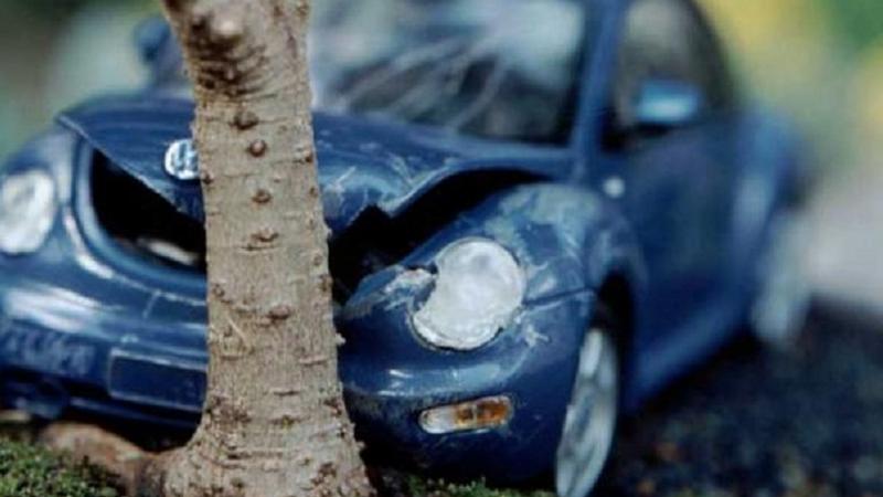 В Великом Устюге пьяный водитель врезался в дерево и впал в кому