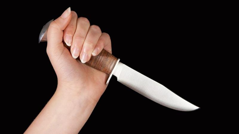 В Череповце дочь напала с ножом на своего отца