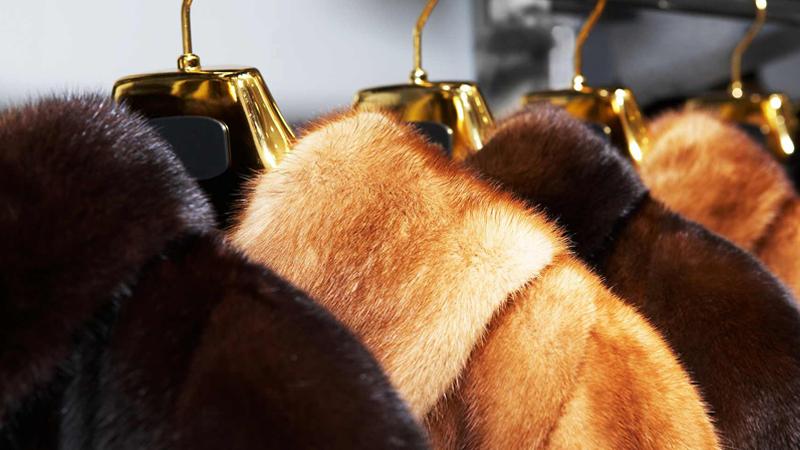 У вологодского предпринимателя конфисковали меха на 756 тысяч рублей