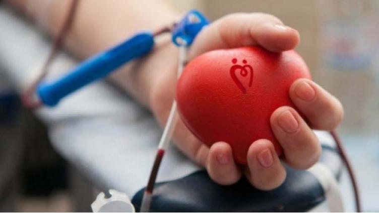 В Вологде срочно ищут доноров всех групп крови
