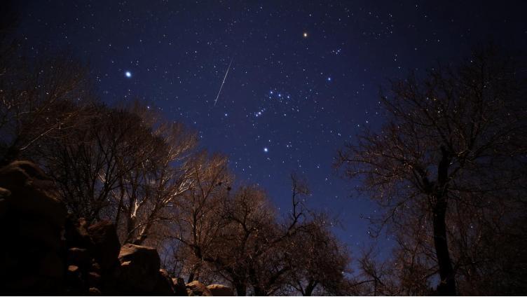 Вологжане смогут увидеть сегодня ночью звёздный дождь