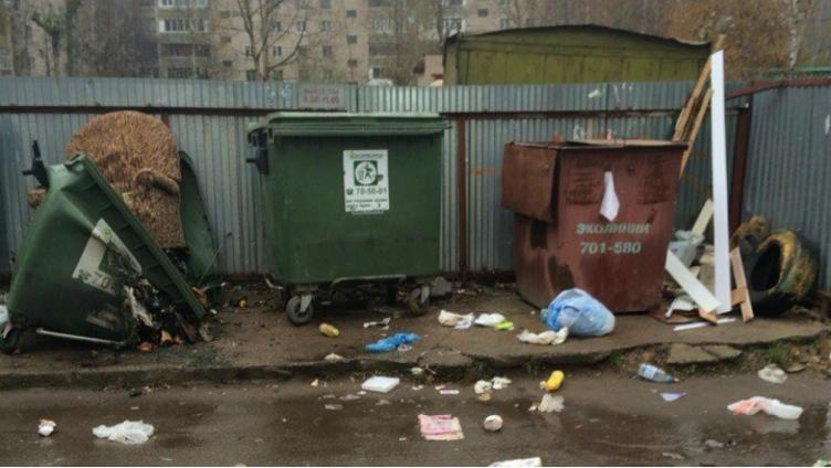Проблему с нехваткой контейнеров для мусора решат к 1 февраля