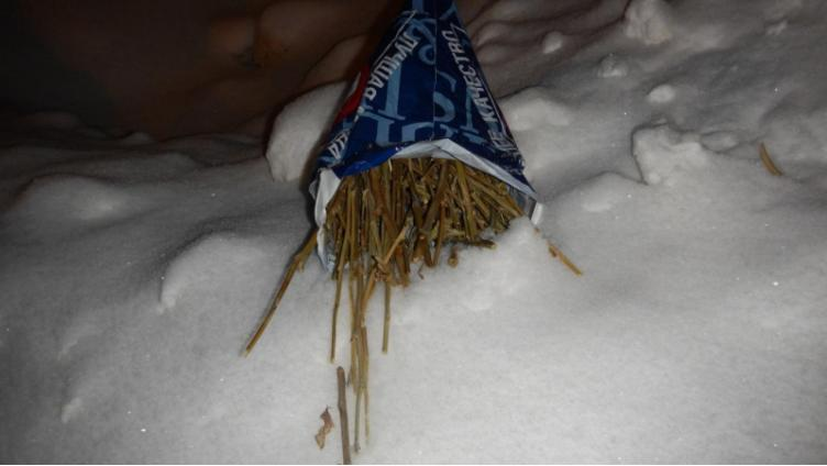 В Вологодской области на чердаке у женщины нашли почти полкилограмма наркотиков