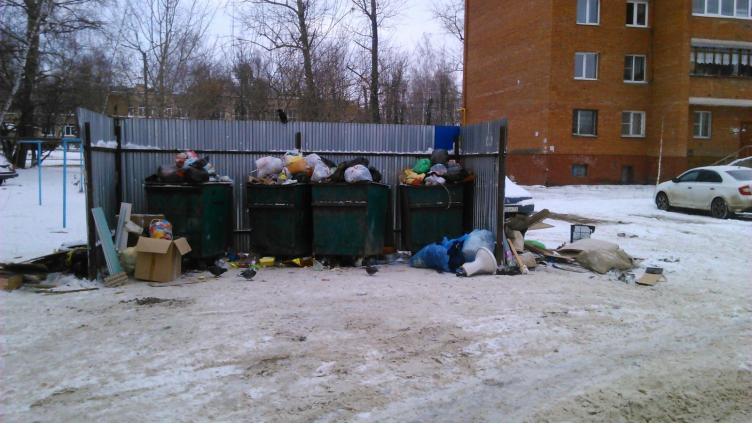 В Вологде решили, кто должен убирать мусор, лежащий вне контейнеров