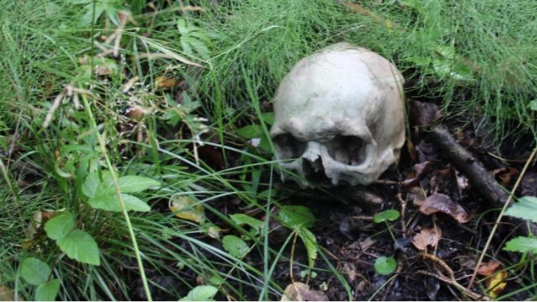 В Вологде нашли скелет с Библией