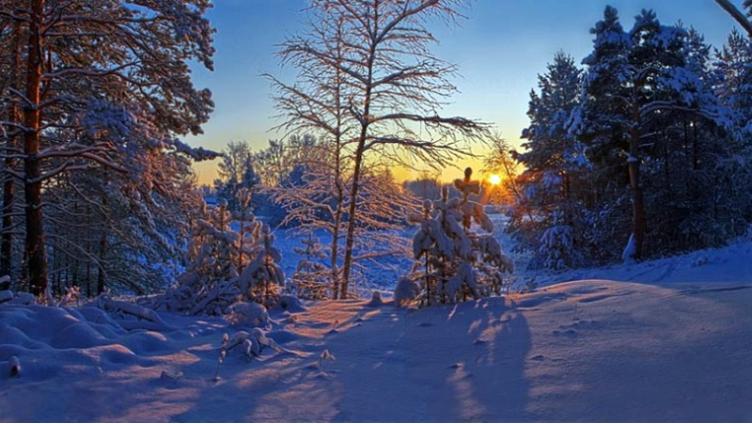 «Зимнее кружево Вологодчины» предлагают запечатлеть фотографам