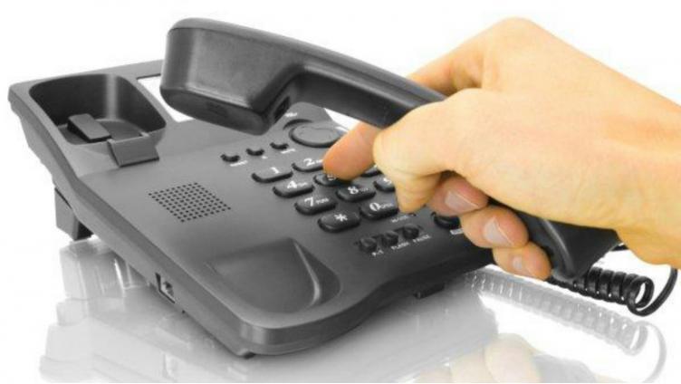Как правильно ухаживать за волосами вологжане узнают по «Телефону здоровья»
