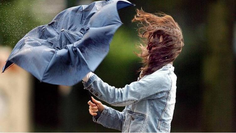 В Вологодской области ожидается сильный шквалистый ветер