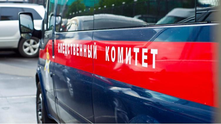 На Вологодчине водитель погиб при погрузке древесины