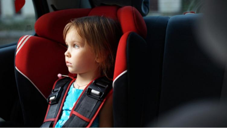 За две недели в Вологде 610 водителей были оштрафованы за перевозку детей без автокресел