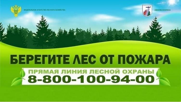 На Вологодчине зарегистрировано 5 лесных пожаров