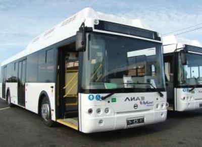 На улицы Вологды выйдут новые автобусы