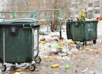 Проблема с мусорными контейнерами в Вологде