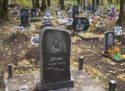 В Череповце хотят ликвидировать кладбище домашних животных