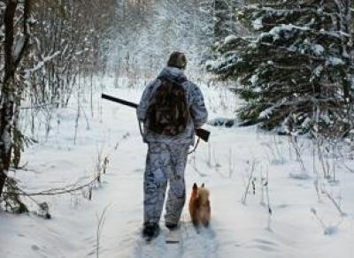 В лесу нашли останки пропавшего вологжанина