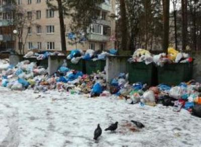 Губернатор потребовал очистить все контейнерные площадки области от мусора до 14 января