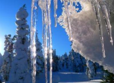 Прогноз синоптиков: ранней весны в этом году не будет