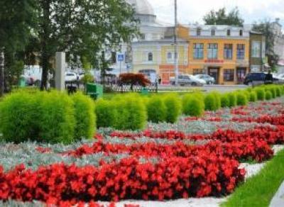 В этом году улицы Вологды украсят более 200 тысяч цветов