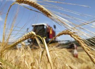 На поддержку сельского хозяйства в Вологодской области выделят больше 2 млрд рублей