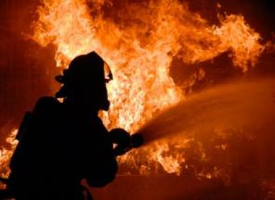 Пожар на животноводческой ферме в Вологодской области