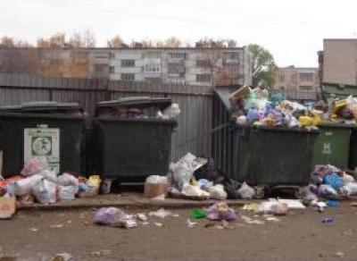 Региональный оператор обязан устранять «мусорные» проблемы за сутки