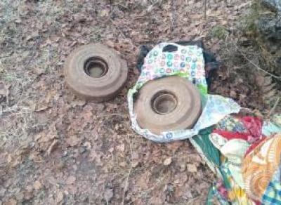 В Вологодской области во время субботника нашли две мины