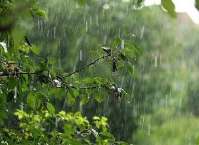 Завтра в Вологду придут ливни