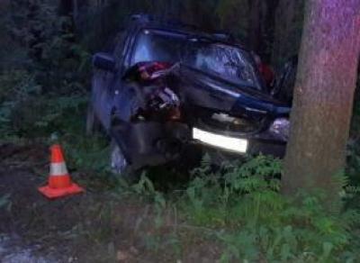 Водитель «Нивы» разбился о дерево