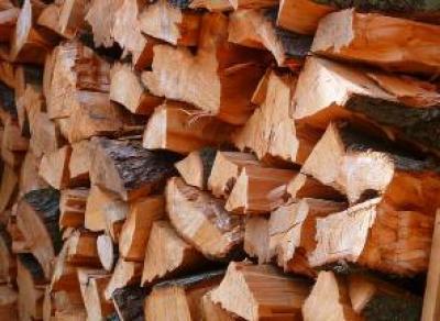 Котельные Вологды будут использовать дрова вместо мазута