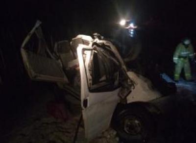Микроавтобус врезался в грузовик, есть пострадавшие