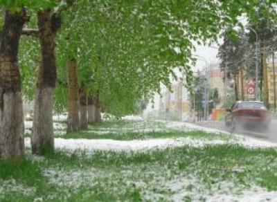 Суровое вологодское лето: синоптики обещают град и снег