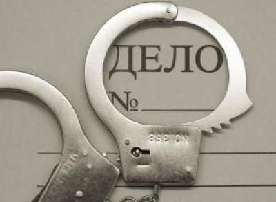 На старшеклассника из Череповца завели уголовное дело за оскорбление полицейского