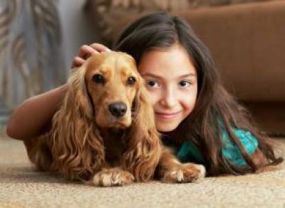 Появление собаки — ответственный шаг