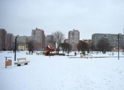 Фрязиновский парк будет благоустраивать новый подрядчик
