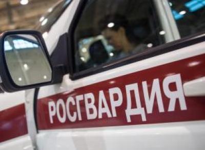 В Вологде бойцы Росгвардии задержали очередного магазинного вора