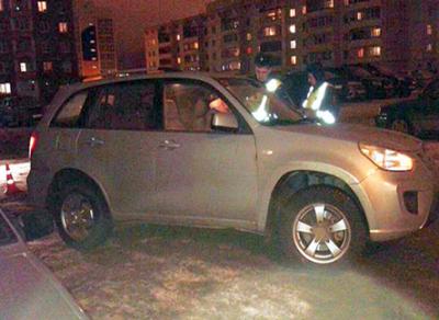 В Вологодской области женщина попала под машину, спасая собаку