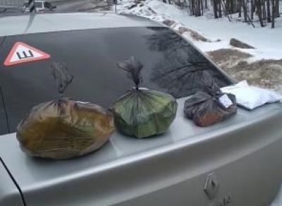 Вологодские полицейские перекрыли крупный канал поставки наркотиков