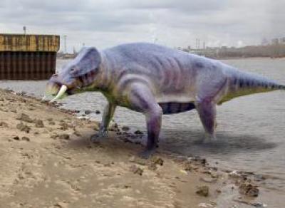 Что было на месте Череповца миллионы лет назад?