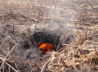 Под Судой сутки тушили горящий торф