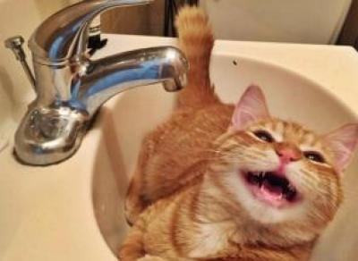 В Заречье отключат воду на 2 дня