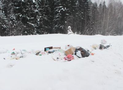 Устюжанку оштрафовали за выброшенный в неположенном месте мусор