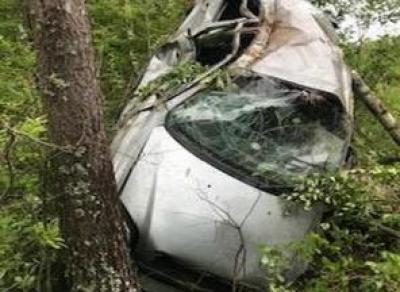 Водитель погиб, разбившись о дерево