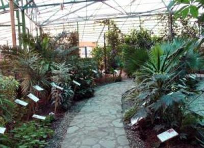 Вологжане смогут посетить Ботанический сад ночью