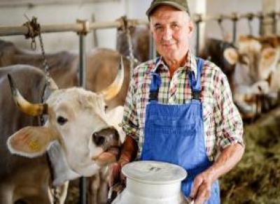 Вологодским фермерам дадут гранты