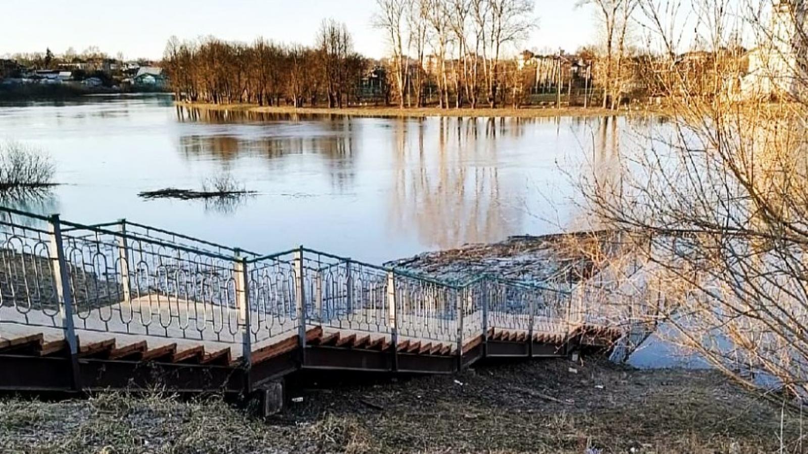 Уровень воды на Вологодчине начал снижаться