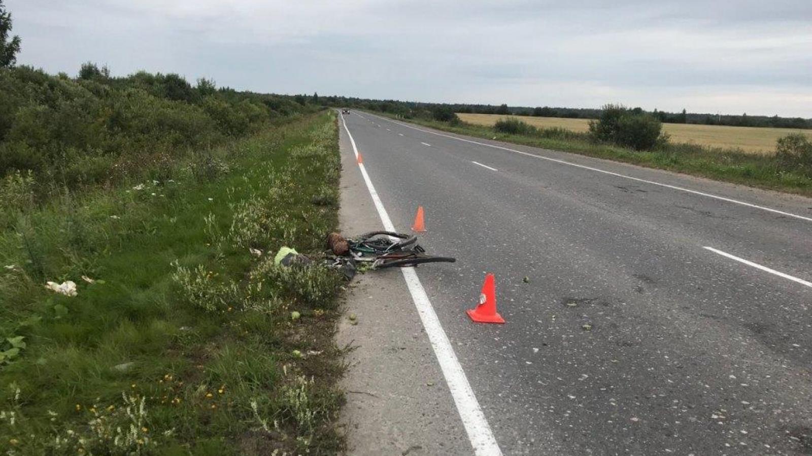 Велосипедиста сбили насмерть под Соколом