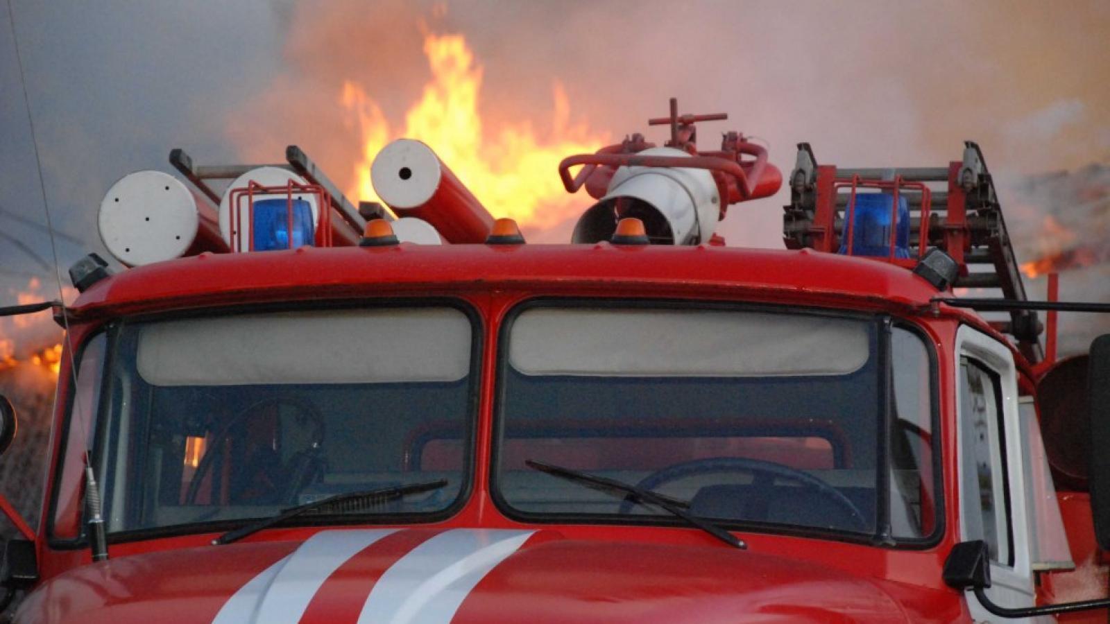 140 человек пришлось эвакуировать из школы в Череповце