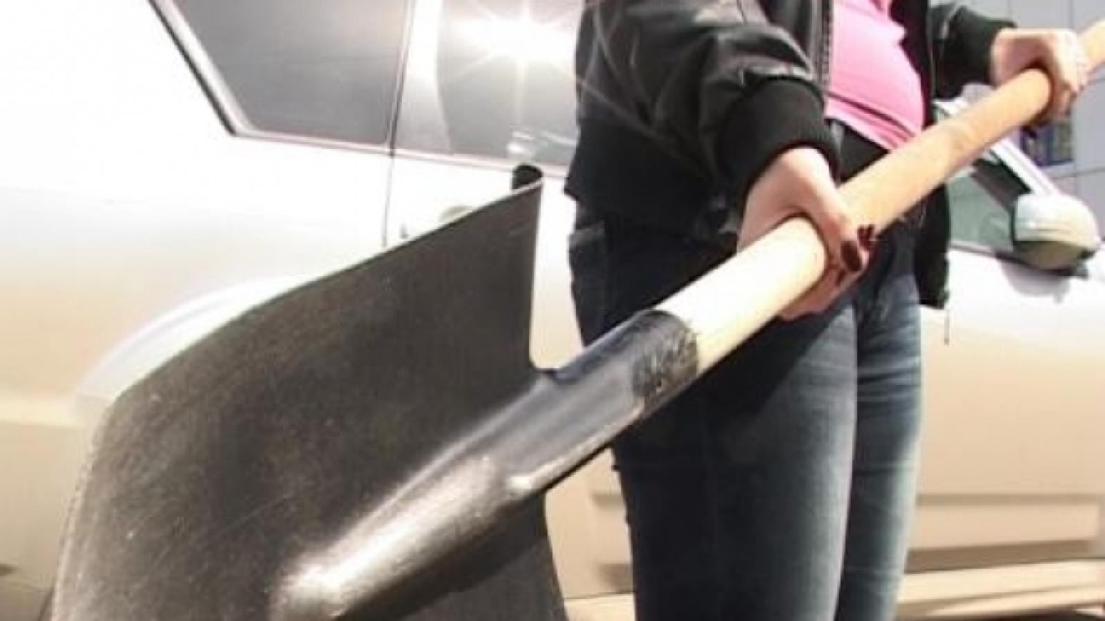 Вологжанка избила полицейских лопатой