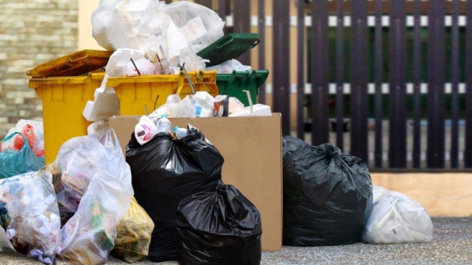 Районы Вологодской области не готовы к мусорной реформе